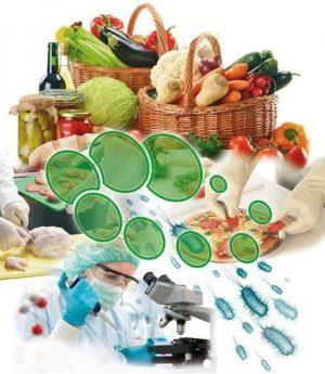 Gıda Üretim Alanları & Gıda Depolama Alanları Dezenfektanları